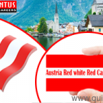 Opulentus assistance in obtaining Austria Red White Red Card